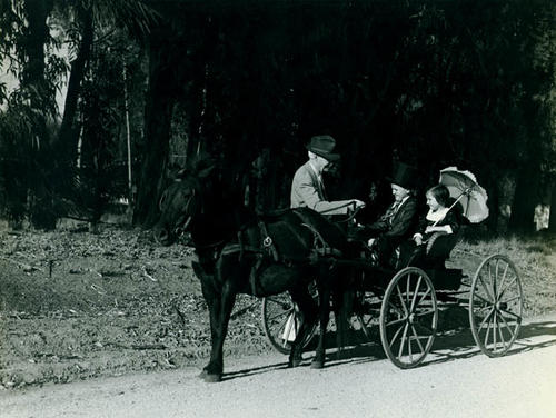 Luther Edison and Amanda Copeland Alden riding in an antique pony cart with an older gentleman.