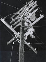 Checking Utility Pole