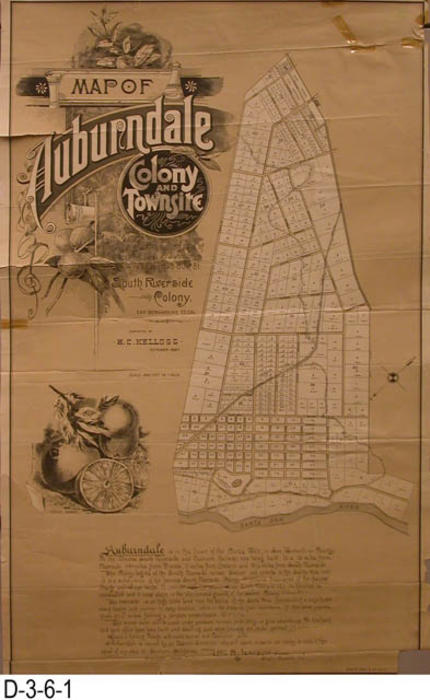 "This map is of Auburndale Colony and historical information is given at the bottom of the map by Wm. H. Jameson.  Auurndale was owned by an Eastern Syndicate who vowed to spare no pains nor money to make it the equal of any place in Southern California.  MEASUREMENTS:  35.5"" X 22"" - CONDITION:  Both copies of this map are very fragile, in poor condition,  and are stored in Mylar envelopes - COPIES:  2 - MAP ORIENTATION:  Bottom is NW. - RETOUCHED COPY:  A retouched digital image is available."