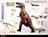 Poster - 1993  - The Tyrannosaur