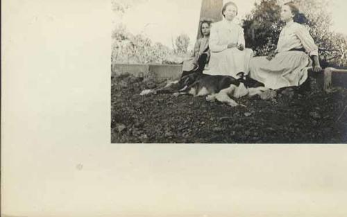Black and white photograph postcard of three girls and their dog.
