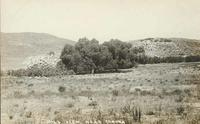 Hill View Near Corona