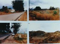 Four Photos of Corona