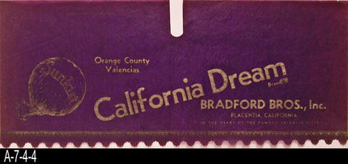 "Bradford Bros., Inc., Placentia, California This citrus label had two functions:  (1) As an advertisement for the brand being packed and (2) It served as protection for the oranges to keep the wooden lid from coming in contact with the fruit and bruising it.  It measures 10"" x 25"" and is printed on very thin paper.  It is kept in a Mylar sleeve and is filed in a map case folder."
