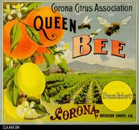 Queen Bee (Label Reproduction)