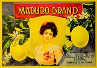 Maduro (Label Reproduction)