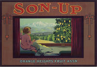 Son - Up