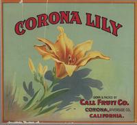 Corona Lily