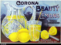 Corona Beauty Lemons (Label Reproduction)