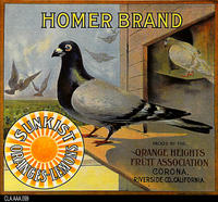 Homer (Label Reproduction)