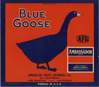 Blue Goose/Ambassador