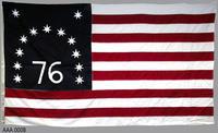 Bennington American Flag - Cotton