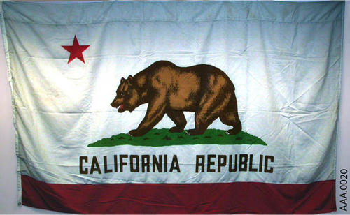 This artifact is a standard, California Bear, State Flag.