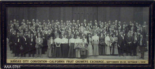 "This artifact is a B/W, group photograph.  The caption at the bottom of the pictures reads:  ""Kansas City Convention - California Fruit Growers Exchange - Sept. 29,30, Oct. 1, 1908.  CONDITION.  The glass on this photograph is broken.  The artifact measures 25 1/4"" x 11 1/2""."
