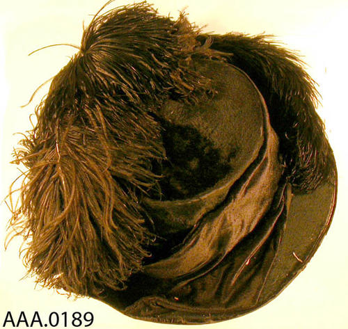 This artifact is a ladies hat with an ostrich feather plume.